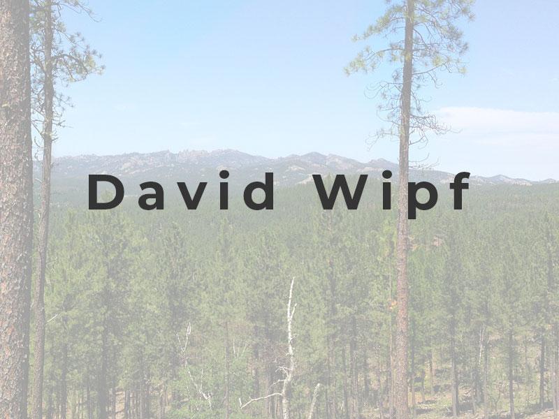 David Wipf